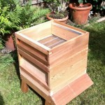 First super added. super frames are placed in here, where honey is stored