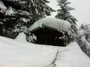 Austrian_Snow_shed